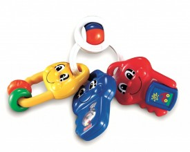 Fisher-Price Bright Beginnings Activity Keys